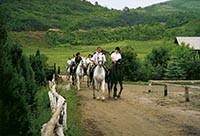 jízda na koni v Tiszfüred